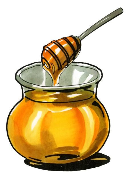 Jak med vzniká
